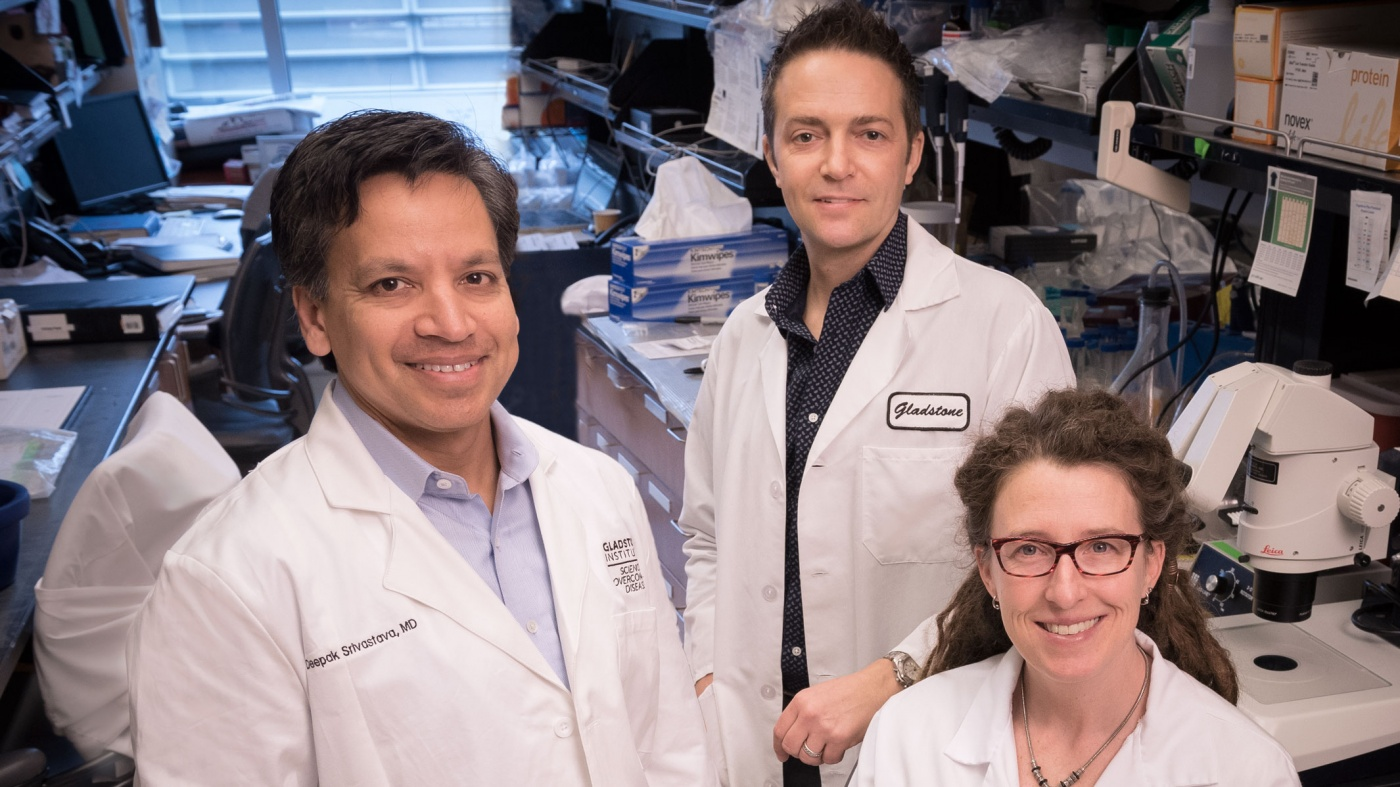 Drs. Srivastava, Bruneau, and Pollard
